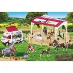 Schmidt-Spiele-56240 Ecole d'équitation et vétérinaire