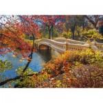 Schmidt-Spiele-58305 Central Park, New York