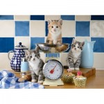 Schmidt-Spiele-58370 Cats in the Kitchen