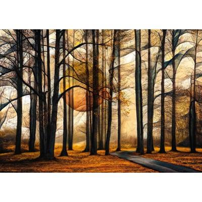Schmidt-Spiele-58396 Magic Forest