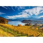 Schmidt-Spiele-58953 Vineyards