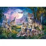 Schmidt-Spiele-58954 Loups