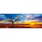 Schmidt-Spiele-59287 Mark Gray : Australie, Oak du désert au coucher du soleil