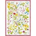 Schmidt-Spiele-59566 Countryside Art - Fleurs Sauvages