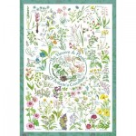 Schmidt-Spiele-59568 Countryside Art - The Flowers and Plants of Britain's Coastline