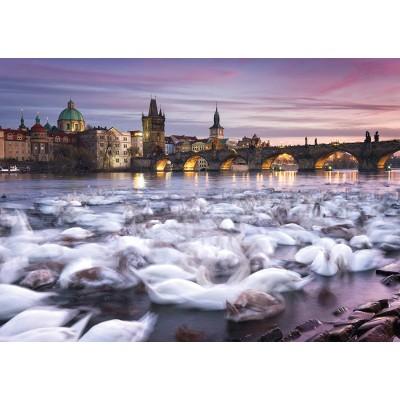 Schmidt-Spiele-59695 Christian Ringer - Prague