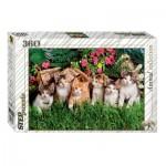 Step-Puzzle-73058 Famille de Chats
