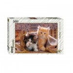 Step-Puzzle-78026 Chatons