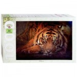 Step-Puzzle-79142 Tigre de Sibérie
