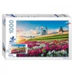 Step-Puzzle-79700 Mosquée Qolsharif