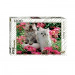 Step-Puzzle-83022 Chatons