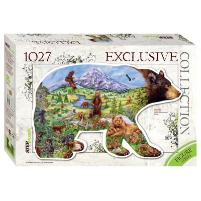 Step-Puzzle-83501 Ours
