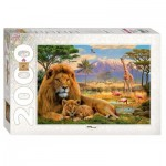 Step-Puzzle-84028 Lions