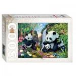 Step-Puzzle-85011 Pandas