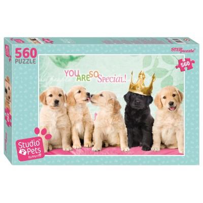 Step-Puzzle-97054 Studio Pets
