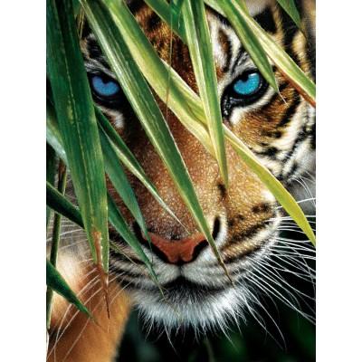 Sunsout-21843 Collin Bogle - Blue Eyes