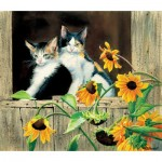 Sunsout-28975 Susan Bourdet - Kittens and Sunflowers