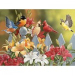 Sunsout-30479 Pièces XXL - William Vanderdasson - Birds on a Fence