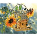 Sunsout-30619 Janene Grende - Bear Valley Birds