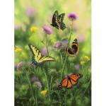Sunsout-30921 Butterflies & Thistle