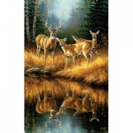 Sunsout-30923 Rosemary Millette - Whitetail Reflections