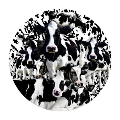Sunsout-35102 Lori Schory - Herd of Cows