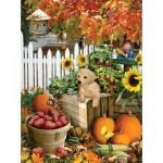 Sunsout-35140 Pièces XXL - Lori Schory - Harvest Puppy