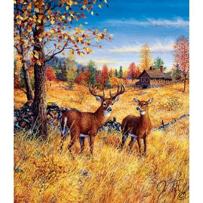 Sunsout-36507 Jeff Tift - Colors of Autumn