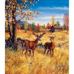 Sunsout-36507 Jeff Tift - Colors of Autumn
