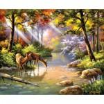 Sunsout-36597 Sung Kim - Doe Re Me Creek