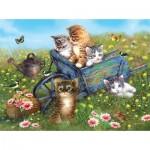 Sunsout-37186 Giordano Studios - Kittens on a Field Trip