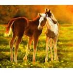 Sunsout-39506 Lesley Harrison - Backlit Foals