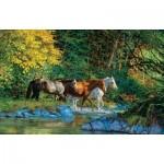 Sunsout-44855 Chris Cummings - Bear Creek Crossing