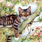 Sunsout-50423 Debbie Cook - Sleepy Cat