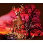 Sunsout-50766 Gordon Semmens - Red Sunset