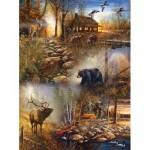 Sunsout-54672 Jim Hansel - Forest Collage