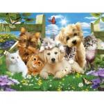 Sunsout-54923 Pièces XXL - Pups n Kittens