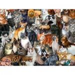 Sunsout-60934 Pièces XXL - Cat Collage