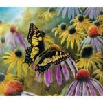 Sunsout-67322 Jim Hansel - Swallowtail Vistor