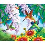 Sunsout-67605 Olga Kovaleva - Hummingbird Fly By