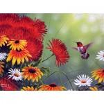 Sunsout-69603 Abraham Hunter - Hummingbird and Red Flower
