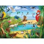 Sunsout-70028 R. Christopher Vest - Florida Birds