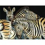 Sunsout-70904 Pièces XXL - Zebras