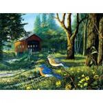 Sunsout-71108 Terry Doughty - Sleepy Hollow Blue Birds