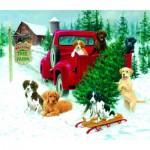 Sunsout-73419 Jim Killen - Christmas Tree Farm