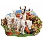 Sunsout-95077 Lori Schory - Llama farm
