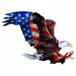 Sunsout-97128 Donna Wayman - American Glory