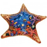 Sunsout-97136 Steve Sundram - Starfish