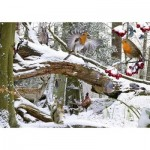 The-House-of-Puzzles-1189 Winter Wood