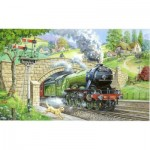 The-House-of-Puzzles-1448 Pièces XXL - Train Spotting